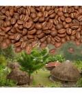 KÁVA PAPUA NEUGUINEA BUNUM WO 100% ARABICA